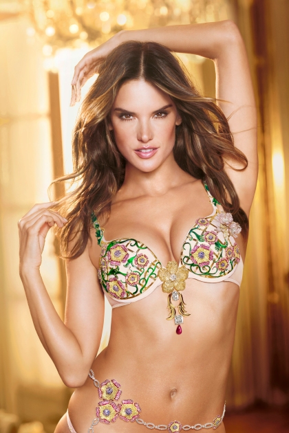 christmas-dreams-fantasies-2012-alessandra-floral-fantasy-bra-victorias-secret-hi-res